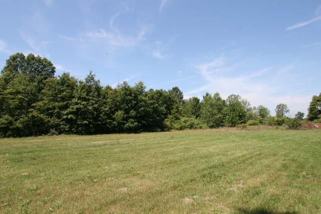Parcel A New Holland Street, Holland, MI 49424 (MLS #21098356) :: Sold by Stevo Team | @Home Realty