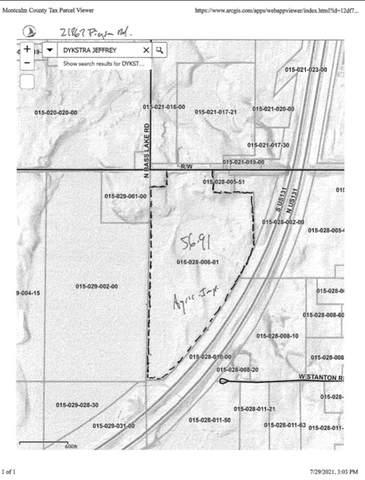 21867 Pierson Road, Pierson, MI 49339 (MLS #21099042) :: Deb Stevenson Group - Greenridge Realty