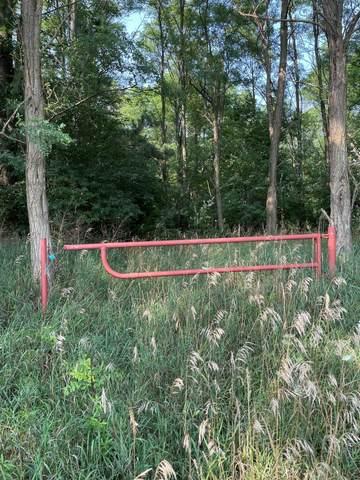 Fox Farm, Manistee, MI 49660 (MLS #21099730) :: Sold by Stevo Team | @Home Realty