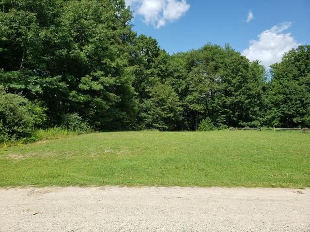 4525 W Arrowhead Drive, White Cloud, MI 49349 (MLS #21100560) :: Sold by Stevo Team   @Home Realty