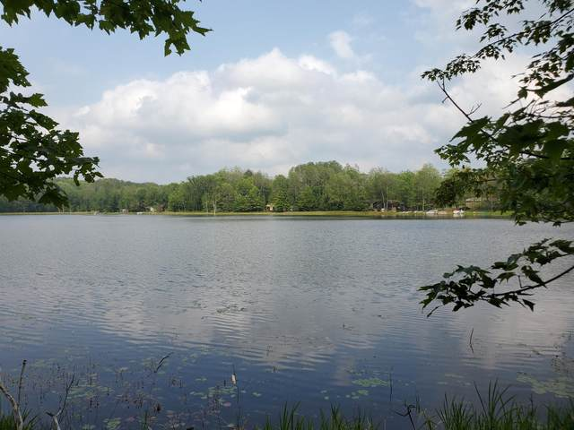 lot 285 Bern Dr., Reed City, MI 49677 (MLS #21100676) :: Sold by Stevo Team | @Home Realty