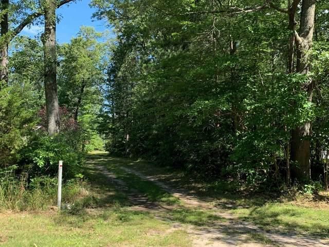 VL W Skeels Road, Montague, MI 49437 (MLS #21100786) :: Deb Stevenson Group - Greenridge Realty