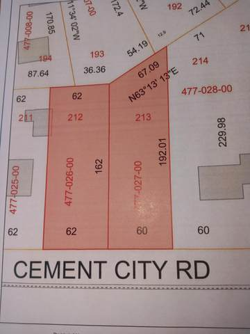 16008 Cement City Road, Brooklyn, MI 49230 (MLS #21100880) :: JH Realty Partners