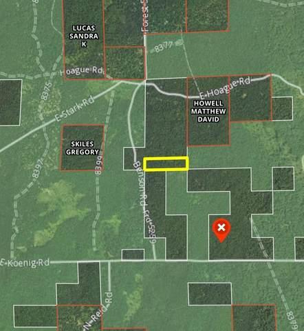 V/L Benson Road, Free Soil, MI 49411 (MLS #21101308) :: The Hatfield Group