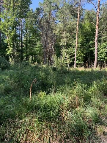 8634 N Hobart Street, Free Soil, MI 49411 (MLS #21101529) :: Sold by Stevo Team | @Home Realty