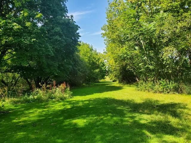 0 N Stone Road, Fremont, MI 49412 (MLS #21102386) :: Sold by Stevo Team | @Home Realty
