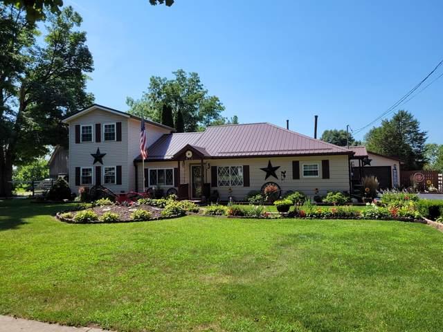414 S Chicago Street, Litchfield, MI 49252 (MLS #21103013) :: The Hatfield Group