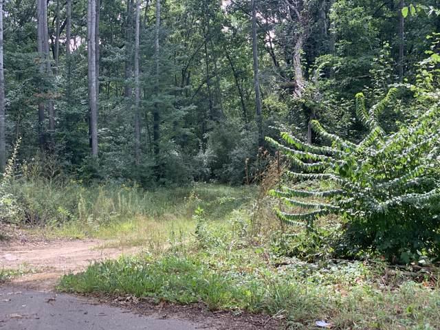 Calender Road, Battle Creek, MI 49014 (MLS #21103827) :: The Hatfield Group