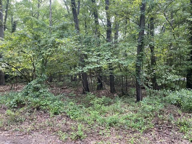 0 Comanche Trail Lot 7, New Buffalo, MI 49117 (MLS #21103942) :: The Hatfield Group