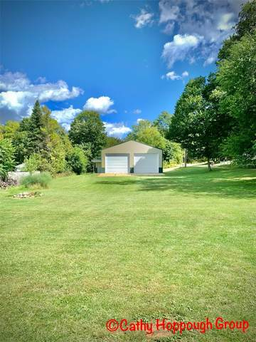 00 Wright Street, Ionia, MI 48846 (MLS #21104885) :: Sold by Stevo Team   @Home Realty