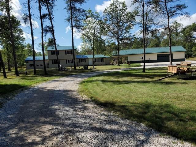 1513 W Pine Tree Road, Baldwin, MI 49304 (MLS #21104970) :: Sold by Stevo Team | @Home Realty