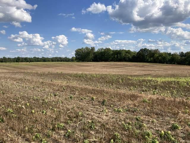 A Bonanza Road, Lake Odessa, MI 48849 (MLS #21105082) :: The Hatfield Group