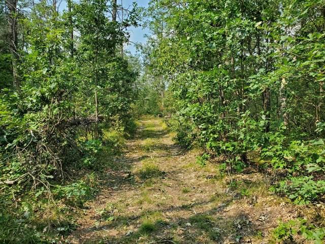 0 6230 Forest Road, Baldwin, MI 49304 (MLS #21105385) :: JH Realty Partners