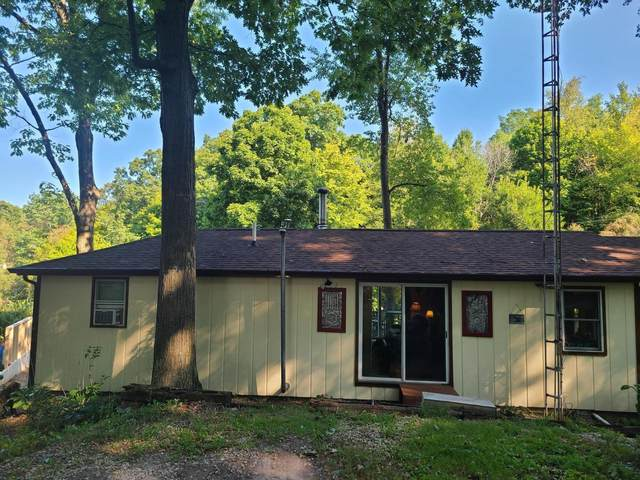 1130 Lakeshore Drive, Hillsdale, MI 49242 (MLS #21105424) :: Sold by Stevo Team | @Home Realty