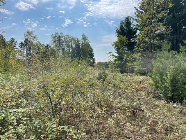 5 Acres Yates Road, Copemish, MI 49625 (MLS #21105938) :: Sold by Stevo Team | @Home Realty