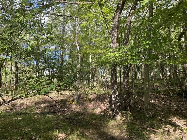 10448 Medicine Lodge Lane, Canadian Lakes, MI 49346 (MLS #21106053) :: CENTURY 21 C. Howard