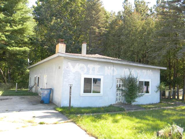 3776 N Jebavy Drive, Ludington, MI 49431 (MLS #21106244) :: Sold by Stevo Team   @Home Realty