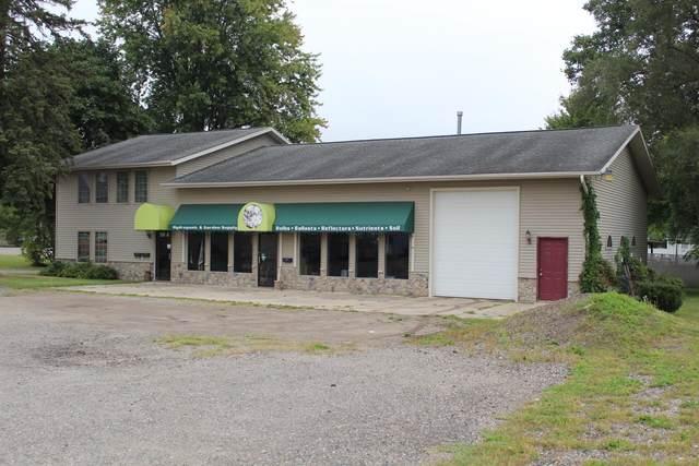 119 5th Street, Michigan Center, MI 49254 (MLS #21106320) :: BlueWest Properties