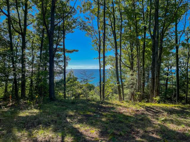 Lot 11 Sable Point Dr, Shelby, MI 49455 (MLS #21106546) :: Sold by Stevo Team | @Home Realty