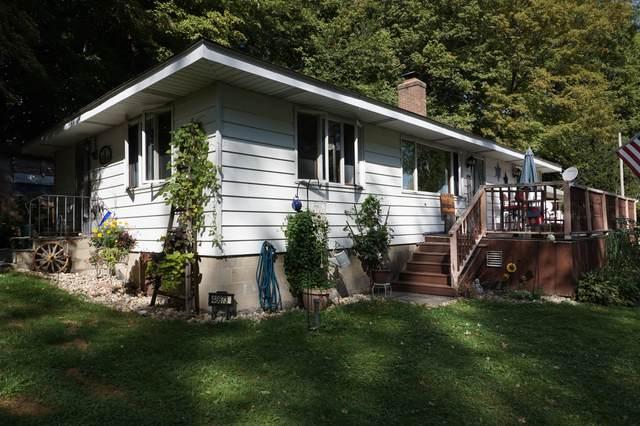 48873 Rush Lake Road, Hartford, MI 49057 (MLS #21106579) :: Sold by Stevo Team | @Home Realty