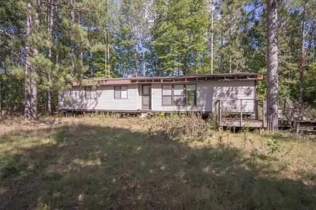 3633 W Baseline Road, White Cloud, MI 49349 (MLS #21106648) :: Sold by Stevo Team   @Home Realty