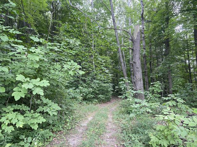 2.8 acres Taylor, Mears, MI 49436 (MLS #21106924) :: JH Realty Partners