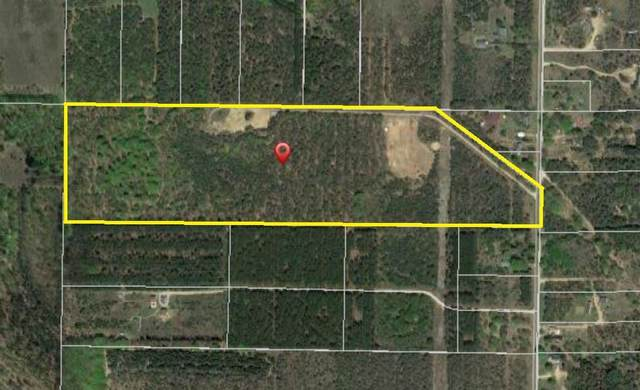 15732 Harlan Road, Copemish, MI 49625 (MLS #21107191) :: Sold by Stevo Team | @Home Realty