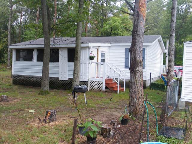 7094 S 116th Avenue, Rothbury, MI 49452 (MLS #21107201) :: Sold by Stevo Team | @Home Realty