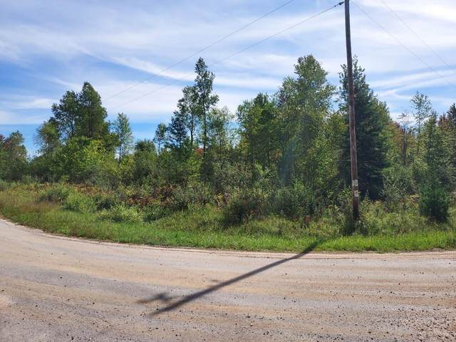 Parcel A Treml Road, Free Soil, MI 49411 (MLS #21107784) :: Sold by Stevo Team | @Home Realty