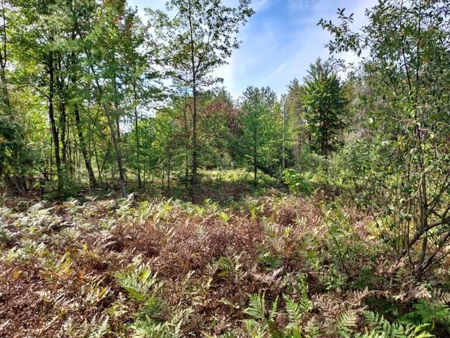 Parcel B Treml Road, Free Soil, MI 49411 (MLS #21107789) :: Sold by Stevo Team | @Home Realty