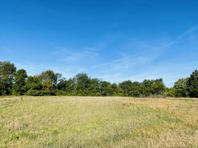 14335 Sheffield's Way, Marne, MI 49435 (MLS #21107831) :: Deb Stevenson Group - Greenridge Realty