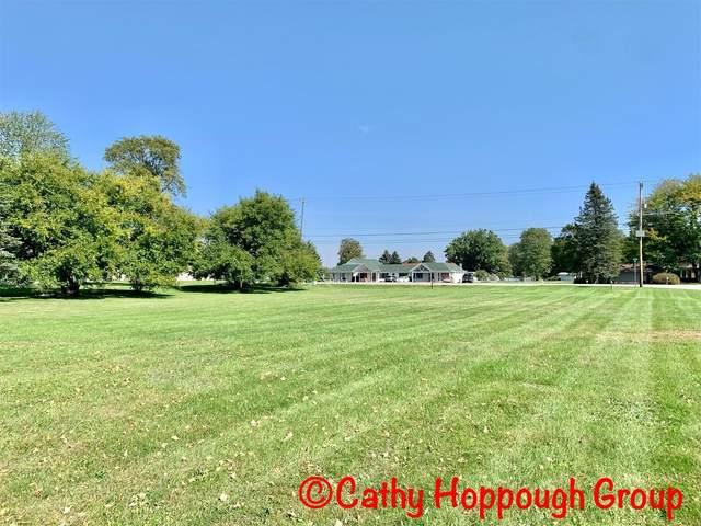 0 Reimer Drive, Ionia, MI 48846 (MLS #21107963) :: The Hatfield Group