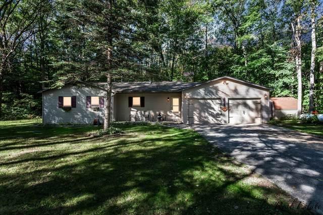 10985 N Federal Road, Morley, MI 49336 (MLS #21108478) :: Sold by Stevo Team   @Home Realty