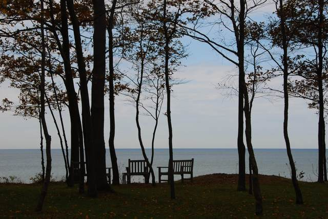 Lot 38 Beech Drive, South Haven, MI 49090 (MLS #21108690) :: Sold by Stevo Team   @Home Realty
