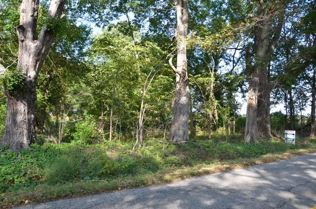 V/L E B Avenue Par A, Richland, MI 49083 (MLS #21108878) :: JH Realty Partners