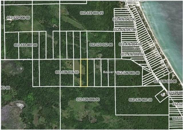 V/L Hannigans Road, Beaver Island, MI 49782 (MLS #21108938) :: Sold by Stevo Team | @Home Realty