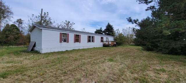 7860 Mauck Road, Hillsdale, MI 49242 (MLS #21108977) :: Sold by Stevo Team | @Home Realty