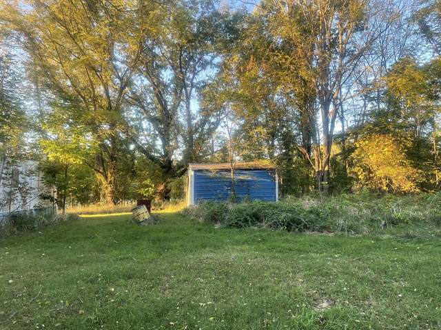 06719 Co Rd 665, Bloomingdale, MI 49026 (MLS #21109029) :: Sold by Stevo Team | @Home Realty