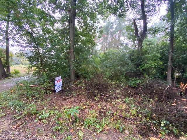 N E Drive, Battle Creek, MI 49014 (MLS #21109059) :: The Hatfield Group