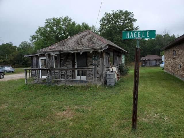 5530 W 10 1/2 Mile Road, Irons, MI 49644 (MLS #21109124) :: The Hatfield Group