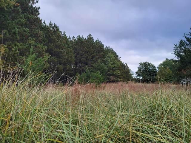 Lot 15 Ervin Road, Free Soil, MI 49411 (MLS #21109221) :: The Hatfield Group