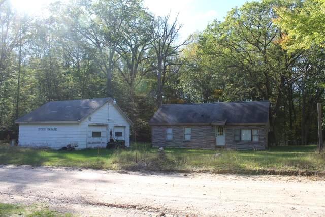 1811 S Shepperd Road, Branch, MI 49402 (MLS #21109241) :: Sold by Stevo Team | @Home Realty