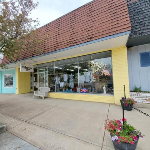 855 Michigan Avenue, Baldwin, MI 49304 (MLS #21109459) :: Sold by Stevo Team | @Home Realty