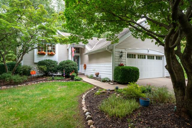 556 North Shore Drive #9, South Haven, MI 49090 (MLS #21109560) :: The Hatfield Group