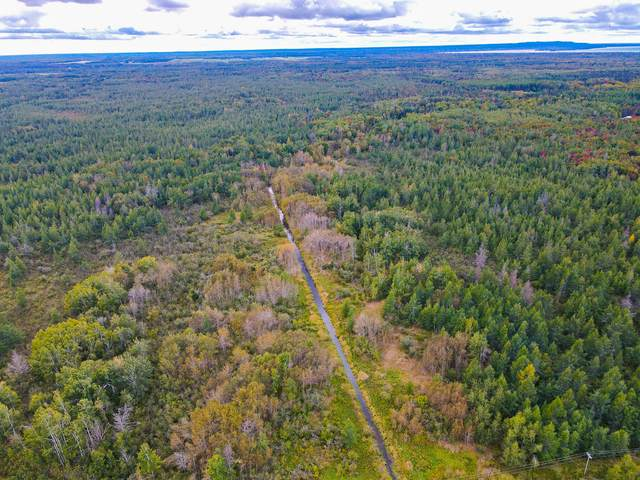 00 S Forrest Side Road, Brimley, MI 49715 (MLS #21109729) :: Sold by Stevo Team   @Home Realty