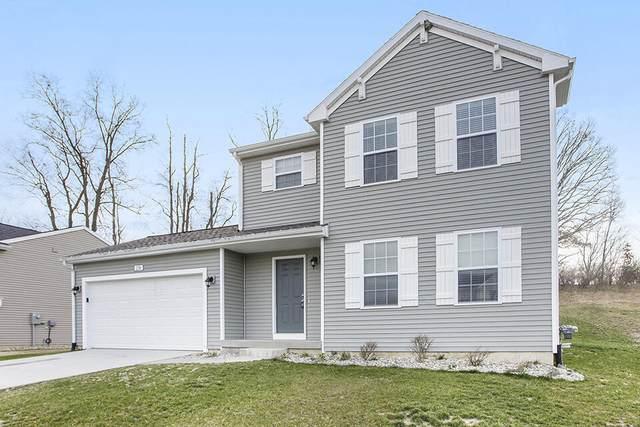 445 Oak View Drive, Middleville, MI 49333 (MLS #21109788) :: Sold by Stevo Team | @Home Realty