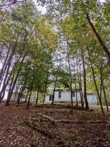 3809 E White River Drive, Hesperia, MI 49421 (MLS #21109892) :: Sold by Stevo Team | @Home Realty