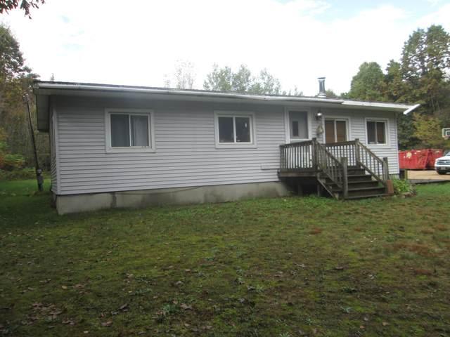 11831 Heintzelman Avenue NE, Greenville, MI 48838 (MLS #21109985) :: The Hatfield Group