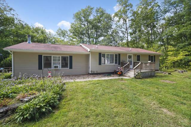 4901 Parsons Road, Concord, MI 49237 (MLS #21110123) :: Sold by Stevo Team | @Home Realty