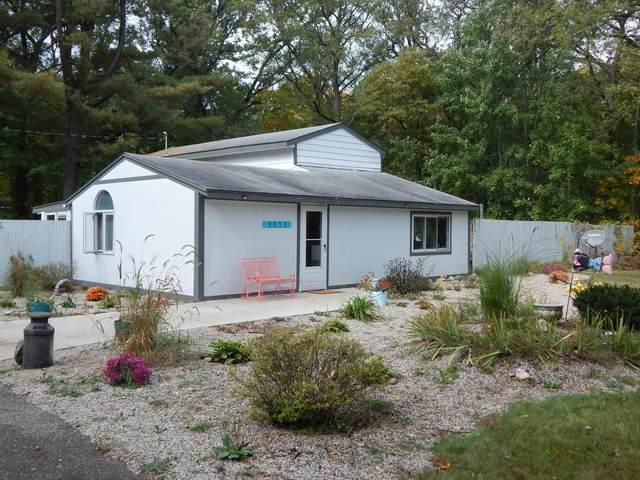 9953 S Bittersweet Avenue, Grant, MI 49327 (MLS #21110196) :: The Hatfield Group